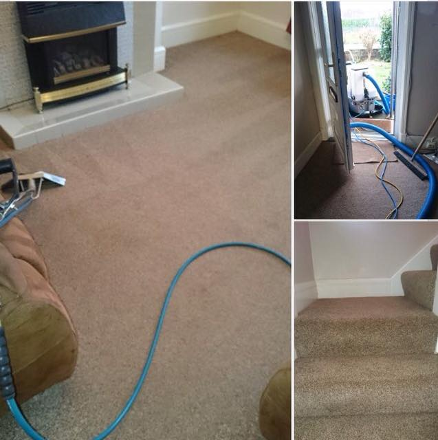 full house carpet clean