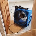 Carpet Cleaning Air Mover