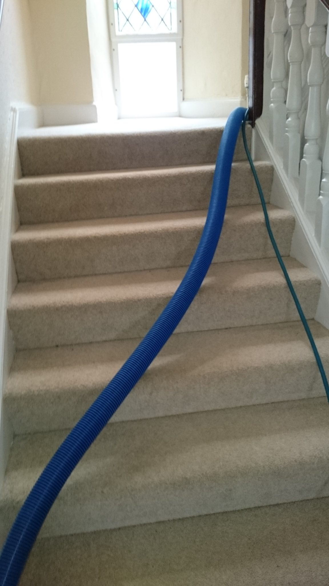 Cleaning carpet steps
