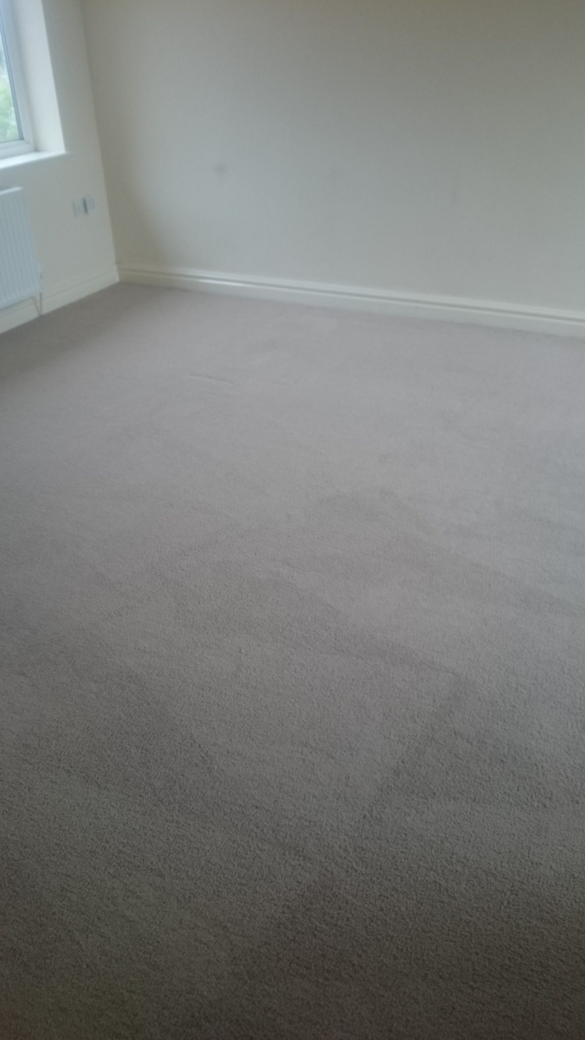 Low Moisture Lounge Carpet Clean