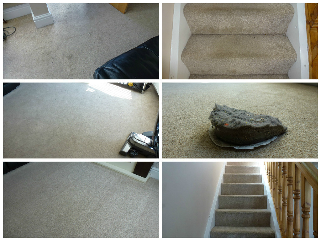 Stairs and Living Room Carpet Clean
